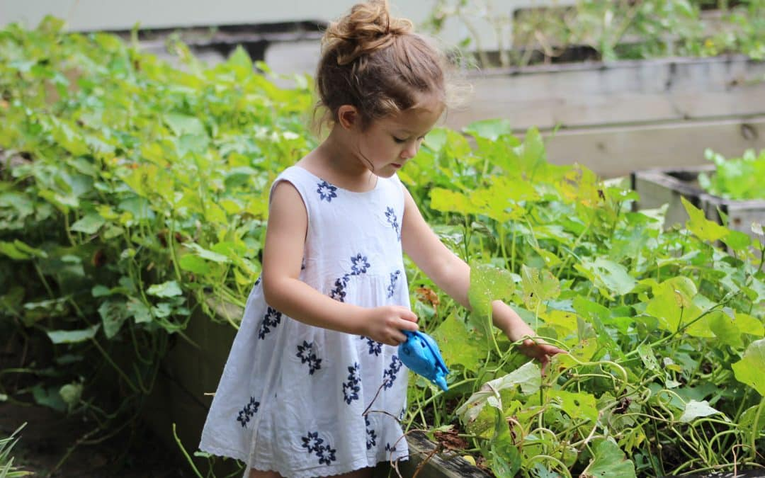 How to Start a Family Garden