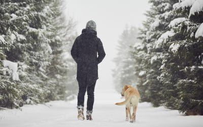 Staying Healthy Through COVID-19 and the Winter Months